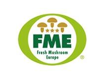 Fresh Mushrooms Europe